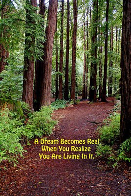 Photograph - The Dream Is Real by Ben Upham III