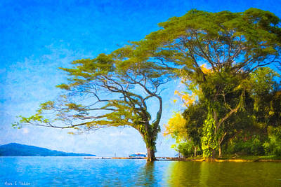 Photograph - The Dream Tree - Lake Nicaragua Landscape by Mark E Tisdale