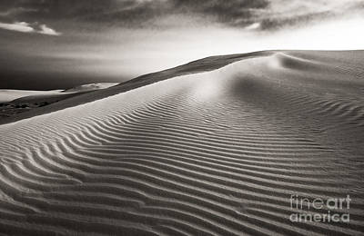 Photograph - The Dune by Sherry Davis