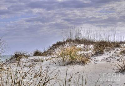 The Dunes At Huntington Beach State Park Art Print by Kathy Baccari