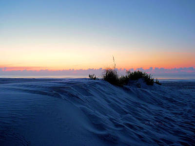 The Dunes Art Print by JC Findley