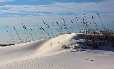The Dunes Of Destin Art Print by JC Findley