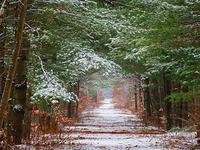 Photograph - The Dusted Trail by MTBobbins Photography