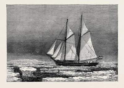 Arctic Drawing - The Dutch Arctic Expedition The Schooner Willem Barents by English School