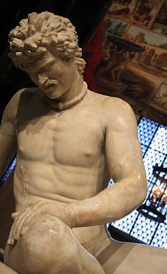 Photograph - The Dying Gaul Up Close by Cora Wandel