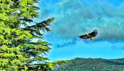 Photograph - The Eagle Has Landed by Allen Beatty