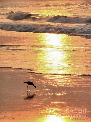 Art Print featuring the photograph The Early Bird by Todd Blanchard