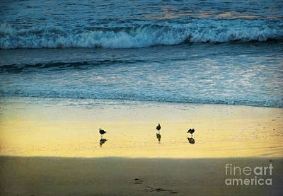 Photograph - The Early Birds by Ellen Cotton