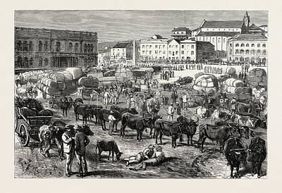 Port Elizabeth Drawing - The Early Morning Market, Port Elizabeth by South African School