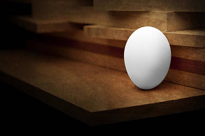 Hen Photograph - The Egg by Tom Mc Nemar