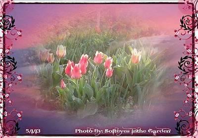 The Elagance Of Spring Art Print by Annette Abbott