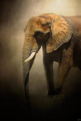 Elephant Photograph - The Elephant Emerges by Jai Johnson