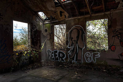 Photograph - The Elephant In The Room - Abandoned Building by Gary Heller