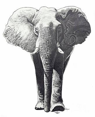 The Elephant Art Print by Kean Butterfield