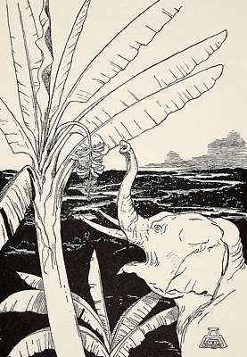 Children Book Drawing - The Elephant's Child Going To Pull Bananas Off A Banana-tree by Joseph Rudyard Kipling