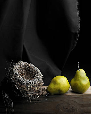 The Empty Nest Art Print