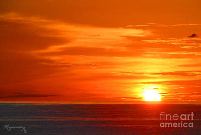 Photograph - The End Of The Day by Mariarosa Rockefeller