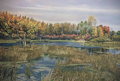 The Endangered Wetlands No. 4 Art Print by James Welch
