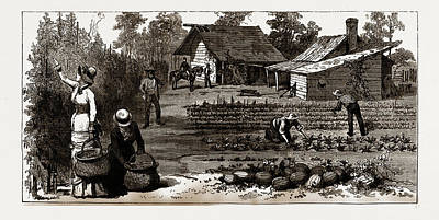 The English Garden, Scenes In Rugby, The English Colony Art Print by Litz Collection
