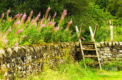 Photograph - The English Ladder Stile by MaryJane Armstrong