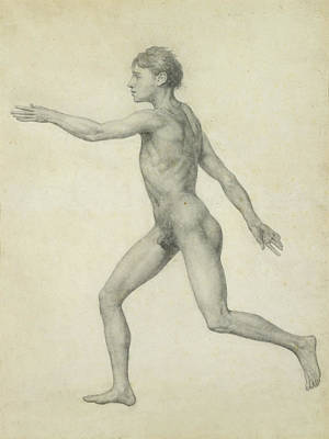 Male Nude Drawing Drawing - The Entire Human Figure From The Left Lateral View by George Stubbs