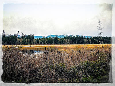 Photograph - Hamilton Marsh  by Roxy Hurtubise