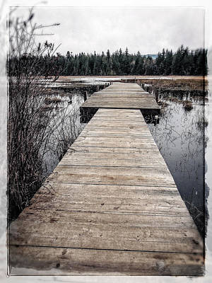 Photograph - Pier Hamilton Marsh  by Roxy Hurtubise