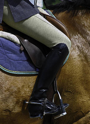 Equestrian Apparel Photograph - The Equestrian by Phil Cardamone