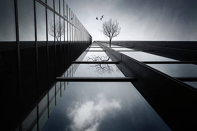 Glass Wall Photograph - The Ethereal Flying Garden by Dr. Akira Takaue