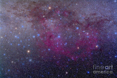 Blue Giant Star Photograph - The Extensive Gum Nebula Area by Alan Dyer