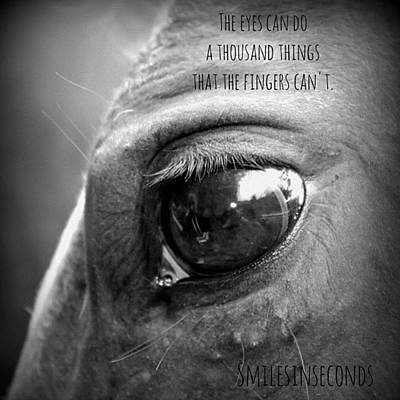 Pferd Photograph - The Eyes Can Do A Thousand by Smilesinseconds Bryant