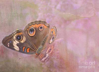 Buckeye Butterfly Digital Art - The Eyes Of Beauty by Michelle Ayn Potter