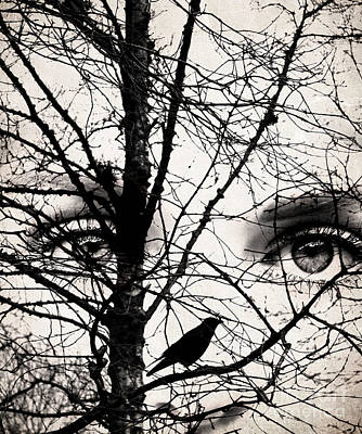 Creative Blackbird Photograph - The Eyes Of The Raven by Jacqueline Moore