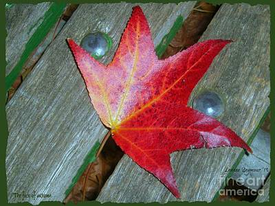 Photograph - The Face Of Autumn by Leanne Seymour