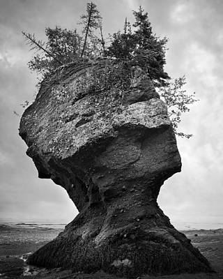 Surreal Landscape Photograph - The Face Of Nature by Irene Suchocki