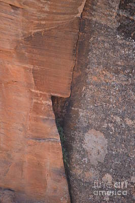 Photograph - The Face Of Zion by Brian Boyle