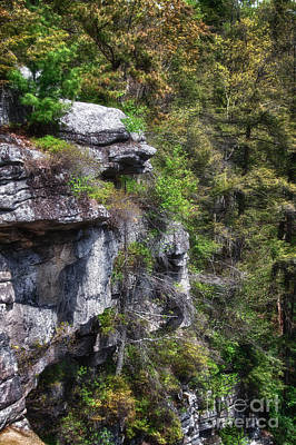 Photograph - The Face Within The Rock by Rick Kuperberg Sr