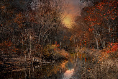 The Fading Glow Of Fall Art Print by Robin-Lee Vieira