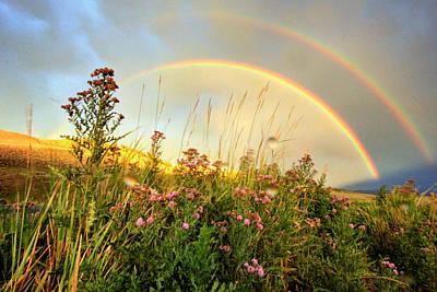 Yellowstone Digital Art - The Fading Rainbow by Jackie Novak
