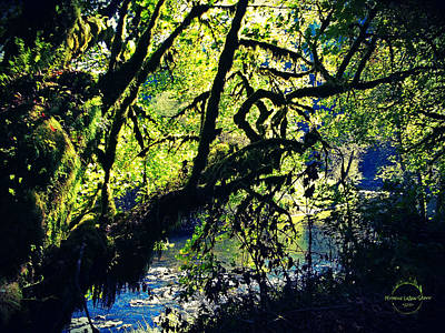 Photograph - The Faerie Glen by Absinthe Art By Michelle LeAnn Scott