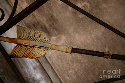 Photograph - The Feather by Kathleen K Parker