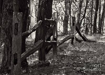 Art Print featuring the photograph The Fence by JRP Photography