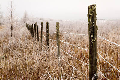 Photograph - The Fence Still Stands by Lori Dobbs