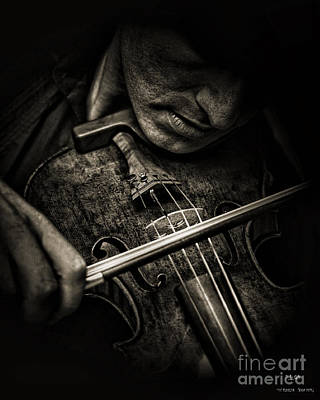 Photograph - The Fiddler by Pedro L Gili