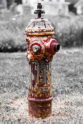 Art Print featuring the photograph The Fire Hydrant by Ricky L Jones