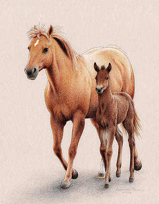 Palomino Foal Drawing - The First Of Spring by Katherine Plumer