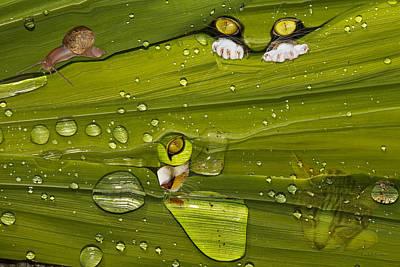 The First Rain Print by Angela A Stanton