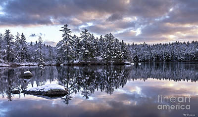 Photograph - The First Snow by Nancy Dempsey