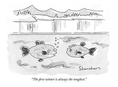 Winter Drawing - The First Winter Is Always The Toughest by Danny Shanahan
