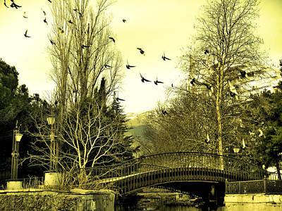 The Flock Near Bridge  Art Print